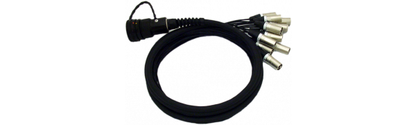 Spliss-Adapter, 12x XLR-male, TL37 male, PUR, 2,5 m